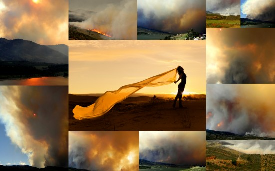High Park Fire collage
