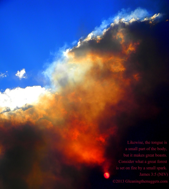 High Park Fire and Scripture